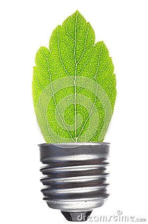 Bilb an leaf