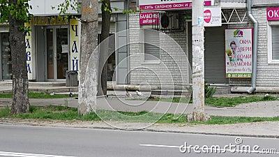 Billboard voor reclame van de verslaggever van het nieuwsagentschap in ua Text slogan stock video