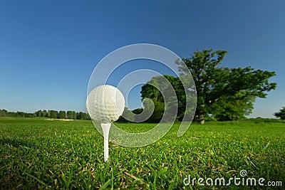 Bille de golf sur le té