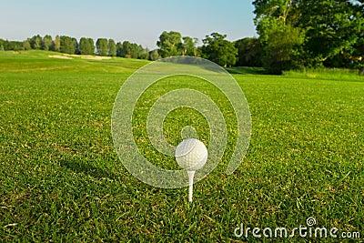 Bille de golf sur le té.