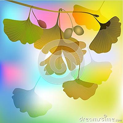 Biloba in autumnal sunlight illustration