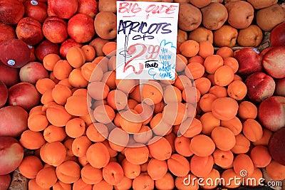 Bin of Apricots