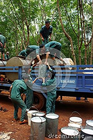 BINH PHUOC,越南9 图库摄影片