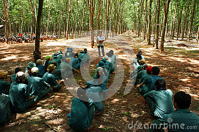 Worker meeting at rubber plantation Editorial Photo