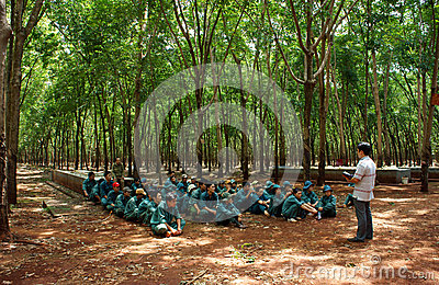 Worker meeting at rubber plantation Editorial Image