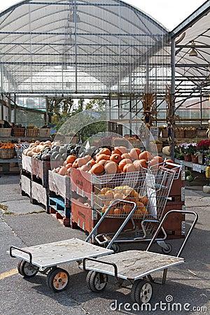 Bins full of pumpkins at farmer s market