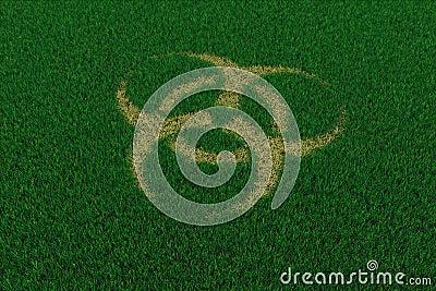 Biohazard symbol from thatch on green grass