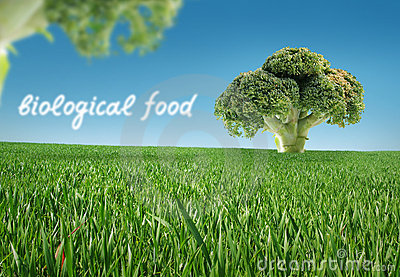 Biological food