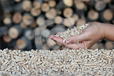 Biomasa de las pelotillas