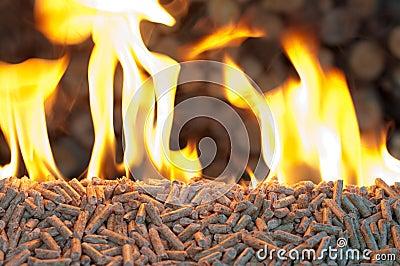 Biomassa das pelotas