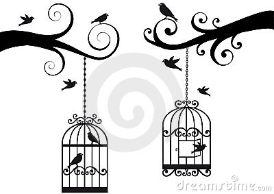 Bircage and birds,