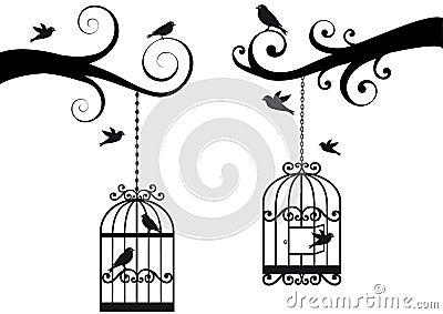 Bircage and birds,