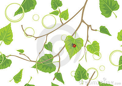 Birch sprig. Decorative spring background