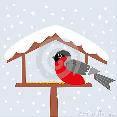 Free Bird And Snow Stock Images - 36808064