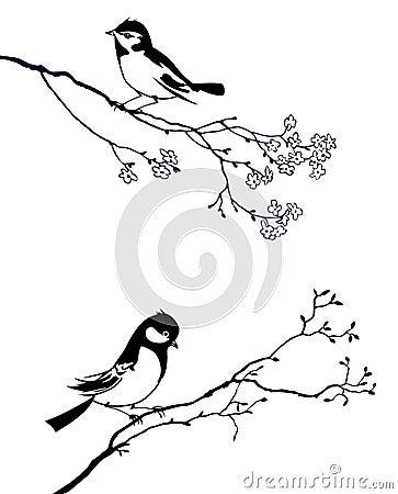 Bird on branch tree