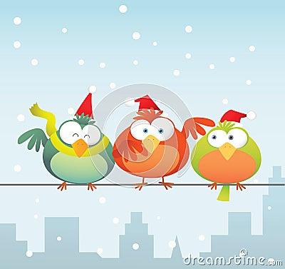 Bird family with santa hat