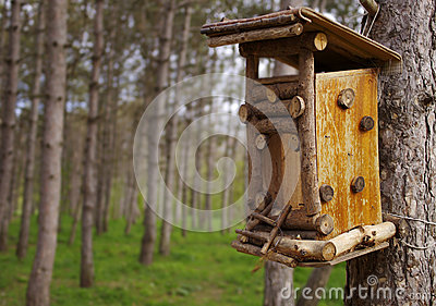 Bird feeder in a wooden house in the garden
