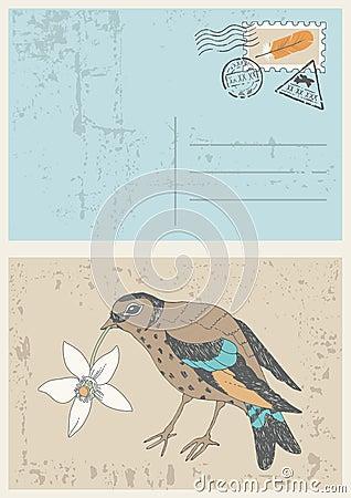 Bird with Flower on Postcard