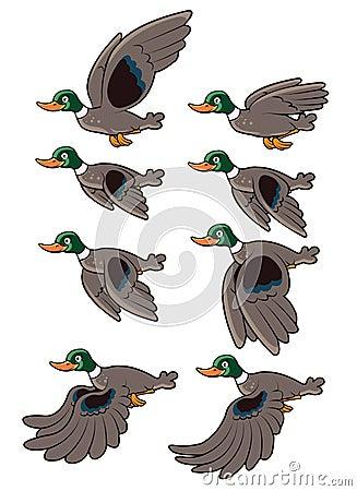 Free Bird Flying Animation Royalty Free Stock Images - 28724969