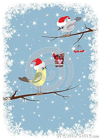 Bird gives a winter celebratory box