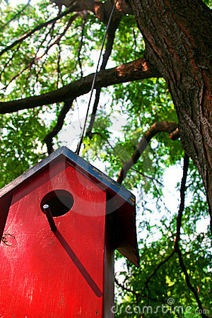 Free Bird House Stock Photography - 698242