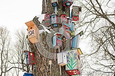 Bird house nesting box snow tree trunk winter