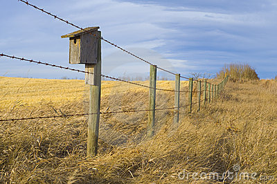 Bird House on the Prairie