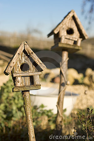 Bird Houses in Sunshine