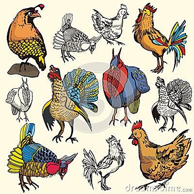 Free Bird Illustration Series Royalty Free Stock Photo - 2729785