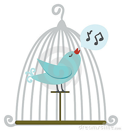 Free Bird In Cage Stock Photography - 9070722