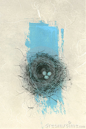 Bird Nest With Blue