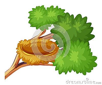 Bird nest on the branch Vector Illustration