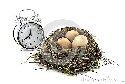 Bird nest with eggs and clock