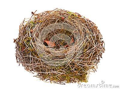 Bird nest empty