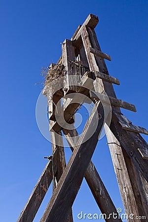 Bird Nest Mine Shaft