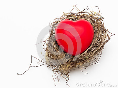 Bird nest with red love heart