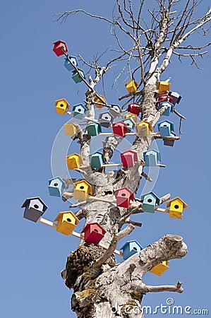 Bird Nest on a Tree