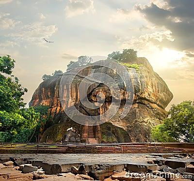 Free Bird Over Sigiriya Stock Images - 65230354