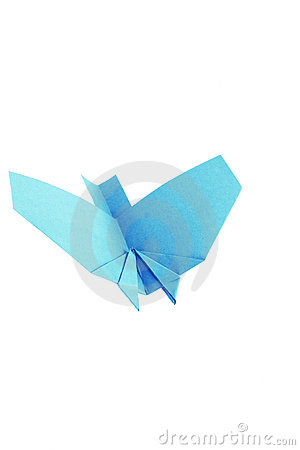 Bird from a paper