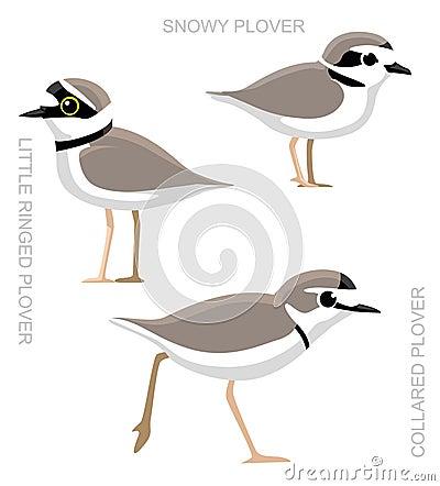 Free Bird Plover Set Cartoon Vector Illustration Royalty Free Stock Image - 67000236
