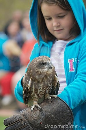 Bird of prey and child