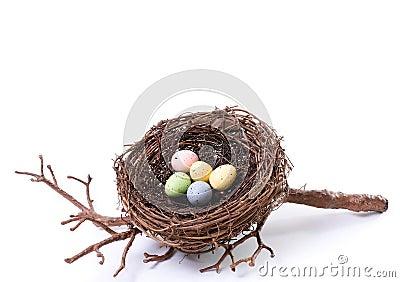Bird's Nest With Pastel Eggs