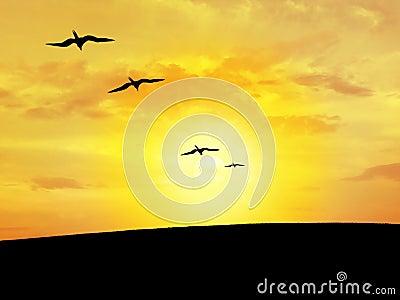 Bird s silhouette