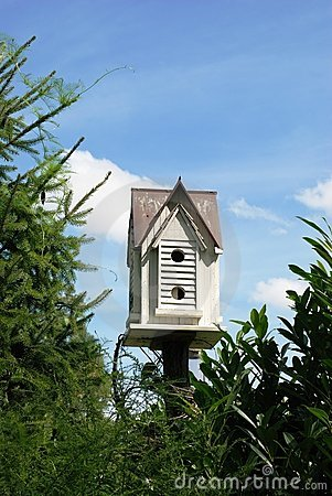 The bird s small house.