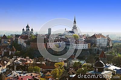 Bird s view on the old Tallinn