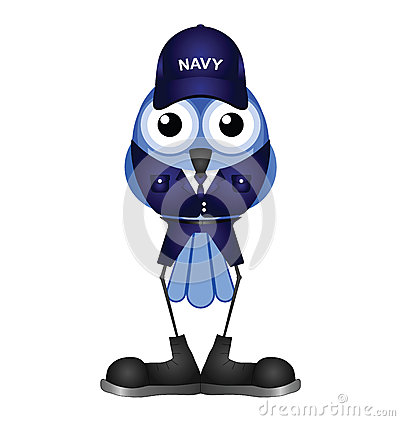Bird sailor