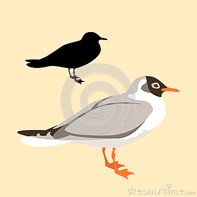 Free Bird Seagull Vector Black Silhouette Style Flat Royalty Free Stock Image - 78026476