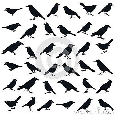 Bird shape.