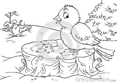 Bird sitting on a stump