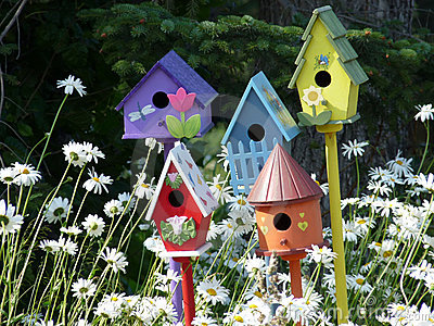Colorful Bird Houses Royalty Free Stock Photos Image